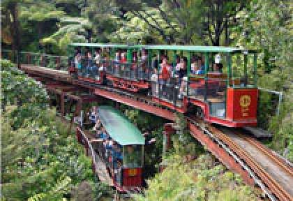 Coromandel - Driving Creek Rail