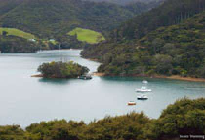 Great Barrier Island - Port Fitzroy